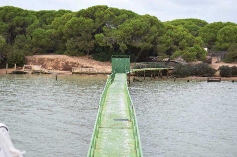 Embarcadero en Doñana
